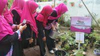 PW IPEMI Sumut Launching Taman Pembibitan Bunga, Sayur dan Buah